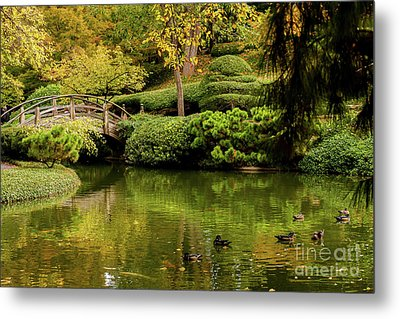 Metal Print featuring the photograph Ducks In Summertime by Iris Greenwell