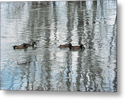 Metal Print featuring the photograph Ducks Painted By God by Teresa Blanton