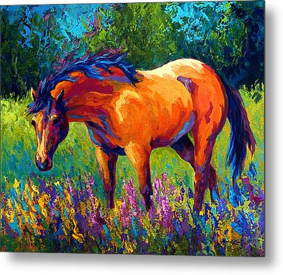 Dun Mare Metal Print by Marion Rose