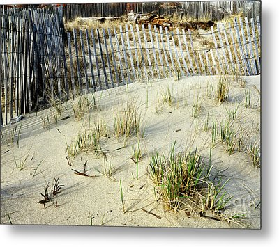 Dune Grass At Asbury Park Metal Print by John Rizzuto