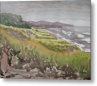 Dune Grass Field Metal Print by Bethany Lee