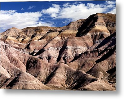 Dunes Of Arizona Metal Print