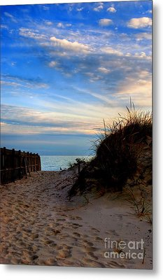 Dunes On The Cape Metal Print by Joann Vitali