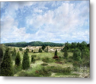 Metal Print featuring the photograph Dunescape Preserved Forever by Kathi Mirto