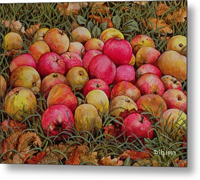 Durnitzhofer Apples Metal Print by Ditz