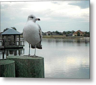 Dusk At The Pier Metal Print by Martha Ayotte