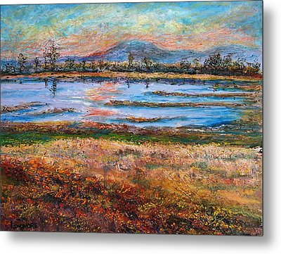 Dusk At Wildlife Refuge Metal Print by Sandra Longmore