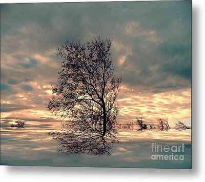 Metal Print featuring the photograph Dusk by Elfriede Fulda