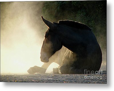 Dusty Roll Metal Print by Deborah Johnson
