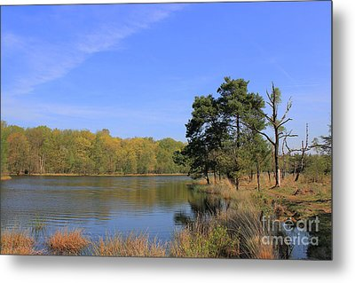 Dutch Countryside With Lakes, Trees, Meadows Metal Print