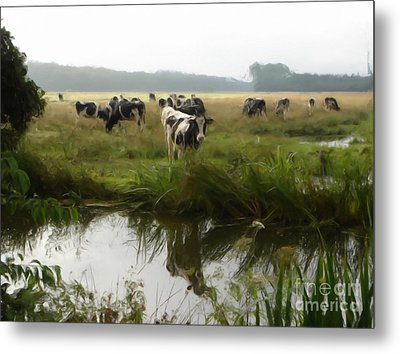 Metal Print featuring the painting Dutch Cows by Jan Daniels
