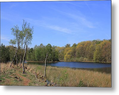 Dutch Landscape With Lakes, Meadows And Trees Metal Print