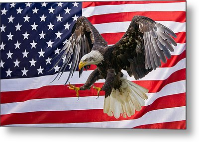 Eagle And Flag Metal Print by Scott Carruthers