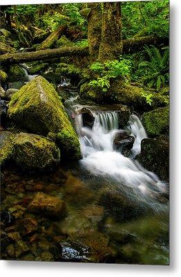 Eagle Creek Cascade Metal Print