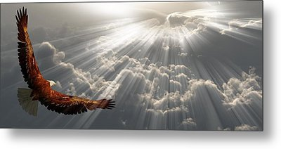 Eagle In Flight Above The Clouds Metal Print