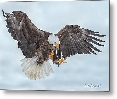 Eagle In The Clouds Metal Print