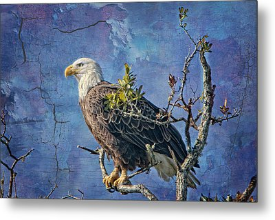 Eagle In The Eye Of The Storm Metal Print by Bonnie Barry