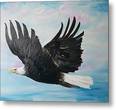 Eagle On A Mission      11 Metal Print