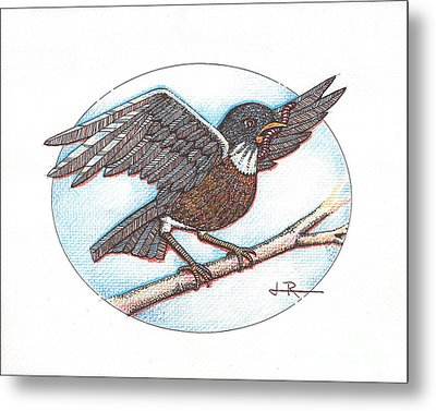 Early Bird, Alighting Metal Print by Jim Rehlin