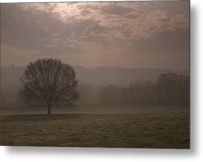 Early Delight Metal Print