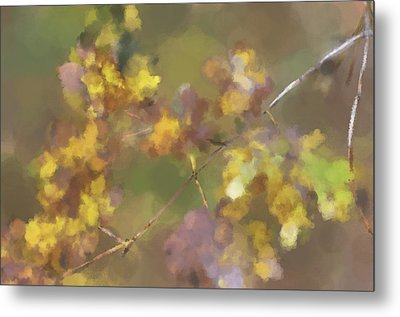 Early Fall Leaves Metal Print