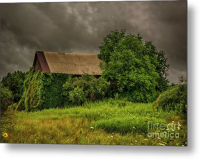 Early Monring Rain Metal Print by JRP Photography