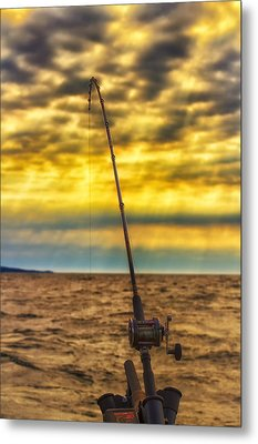 Early Morning Bite Metal Print by Bill Tiepelman