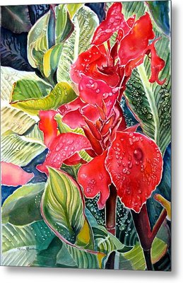 Early Morning Cannas  Metal Print by Therese AbouNader