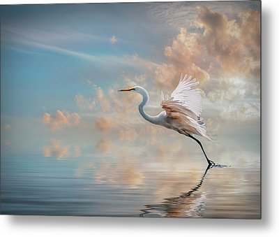 Early Morning Egret Metal Print