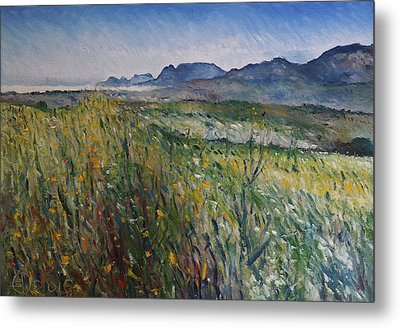Early Morning Fog In The Foothills Of The Overberg Range Of Mountains Near Heidelberg South Africa. Metal Print by Enver Larney