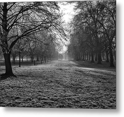 Early Morning In Hyde Park 16x20 Metal Print