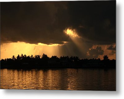 Early Morning Light Metal Print by Diane Merkle