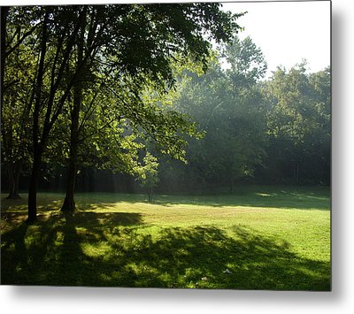 Metal Print featuring the photograph Early Morning Meadow by Cynthia Lassiter
