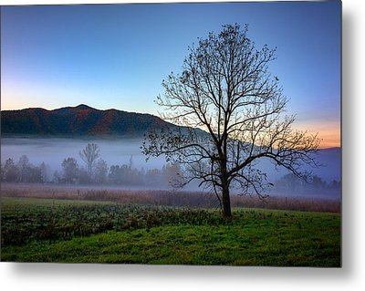 Early Morning Mist In Cades Cove Metal Print by Rick Berk