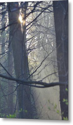 Early Morning Rays Metal Print by Bill Cannon