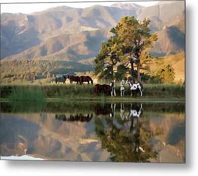 Early Morning Rendezvous Metal Print