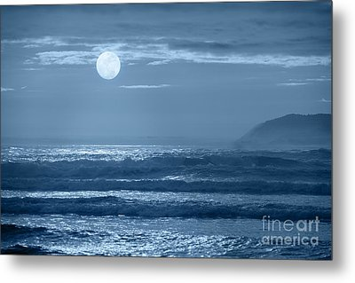 Early  Morning Splendor Metal Print by Sandra Bronstein
