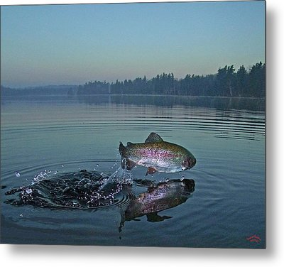 Early Riser Metal Print by Brian Pelkey