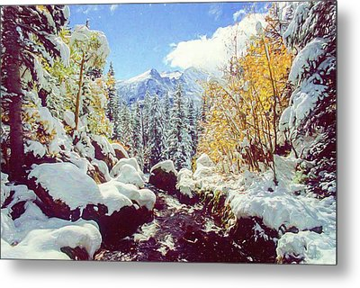 Metal Print featuring the photograph Early Snow by Eric Glaser
