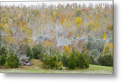 Metal Print featuring the photograph Early Snow Fall by Wanda Krack