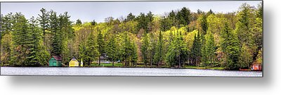 Early Spring Panorama Metal Print by David Patterson