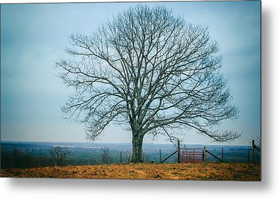 Early Winter In Maine Metal Print by Joseph Smith