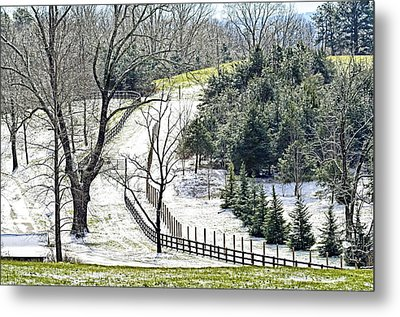 Early Winter Pasture Metal Print by Susan Leggett