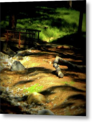 Earth Walk Metal Print