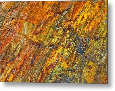 Earths Palette Metal Print by Karon Melillo DeVega