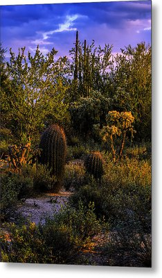 East Of Sunset V40 Metal Print by Mark Myhaver