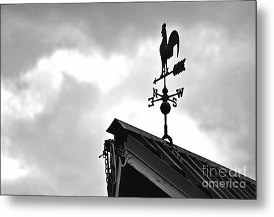 Easterly Wind  Metal Print