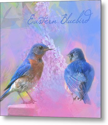 Metal Print featuring the photograph Eastern Bluebirds Watercolor Photo by Heidi Hermes