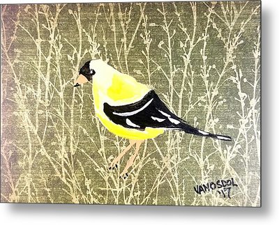 Eastern Goldfinch Metal Print