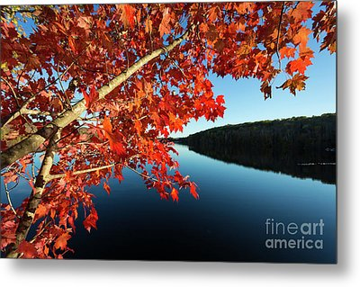 Metal Print featuring the photograph Eastman Pond Grantham New Hampshire October by Edward Fielding